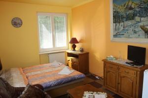 Villa Anastazis - Penzion Eden, Guest houses  Karlovy Vary - big - 47