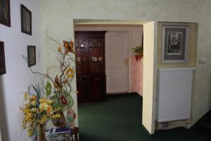 Villa Anastazis - Penzion Eden, Guest houses  Karlovy Vary - big - 159