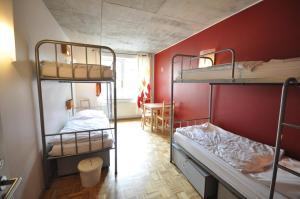 Single Bed in Female Dormitory Room (6 Adults)