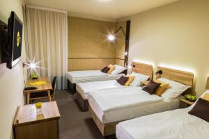 Hotel Golf Depandance, Hotely  Praha - big - 14