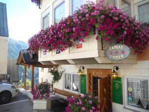Albergo Alpino - Hotel - Arabba