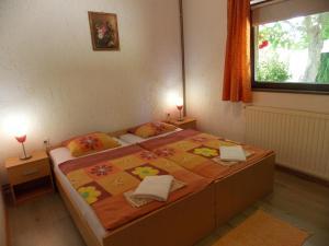 Apartments Smirnov, Appartamenti  Drežnik Grad - big - 15