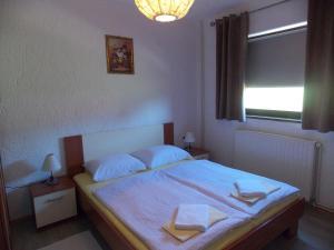 Apartments Smirnov, Appartamenti  Drežnik Grad - big - 14