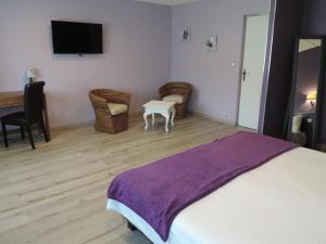 Hôtel Lac Et Forêt, Hotels  Saint-André-les-Alpes - big - 3
