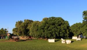 Cortijo El Indiviso, Загородные дома  Вьер де ла Фронтера - big - 59