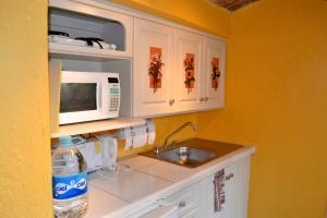 Ajijic Suites - on Hidalgo, Apartmány  Ajijic - big - 36