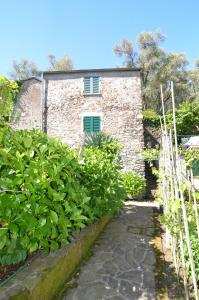 Levanto Rentals, Apartments  Levanto - big - 24