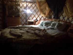 Almond Grove Yurt Hotel, Zelt-Lodges  Ábrahámhegy - big - 2