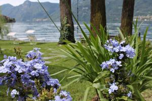 Casa Capanno, Holiday homes  Varenna - big - 30