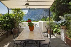 Villa Mariuccia Capri, Apartmanok  Capri - big - 7