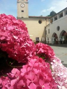 La Torre, Bed and breakfasts  Isolabona - big - 30