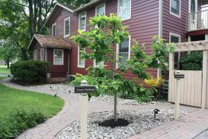 Schoolmaster's House Bed & Breakfast, Bed and Breakfasts  Niagara on the Lake - big - 43
