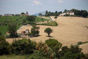 Casale Giuncheto, Farmy  Pilonico Paterno - big - 6