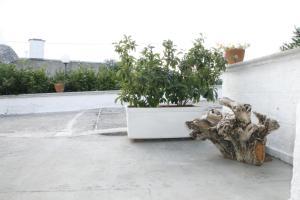 La Dimora di Pirro, Appartamenti  Selva di Fasano - big - 46