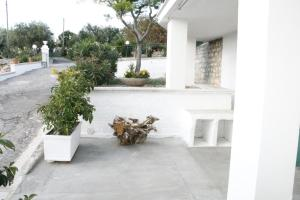 La Dimora di Pirro, Appartamenti  Selva di Fasano - big - 48