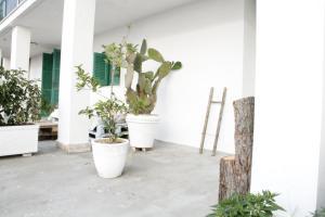 La Dimora di Pirro, Appartamenti  Selva di Fasano - big - 49