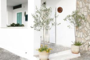 La Dimora di Pirro, Apartments  Selva di Fasano - big - 41