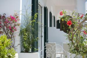 Villa Mariuccia Capri, Apartmanok  Capri - big - 17