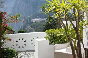 Villa Mariuccia Capri, Apartmanok  Capri - big - 18