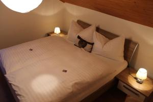 Hotel Rothorn, Hotely  Schwanden - big - 28