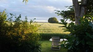 B&B Droom 44, Bed & Breakfasts  Buinerveen - big - 9