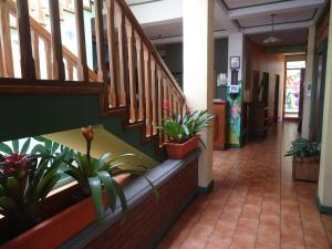 Boutique Hotel Casa Orquídeas, Hotels  San José - big - 52