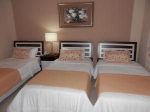 Del Sur Hotel-Museo, Hotels  Encarnación - big - 33