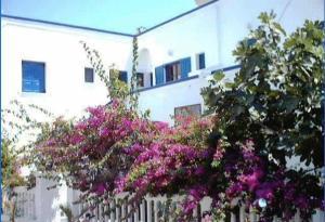 Villa Gambas(Kamari)