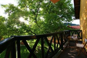Pensiunea Elena, Vendégházak  Aknavásár - big - 40