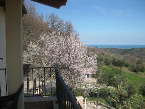 Casajo, Guest houses  Lapedona - big - 24