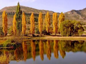 Lake Clarens Guest House, Guest houses  Clarens - big - 19