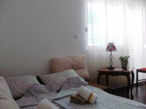 Little Rock Apartments, Appartamenti  Mostar - big - 78
