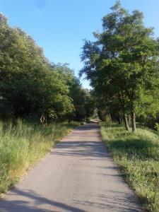 Guest House Vidmar, Гостевые дома  Сремски-Карловци - big - 90