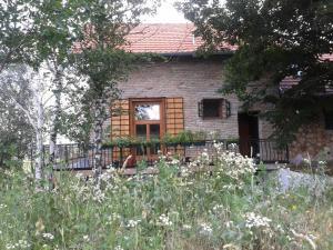 Guest House Vidmar, Гостевые дома  Сремски-Карловци - big - 82