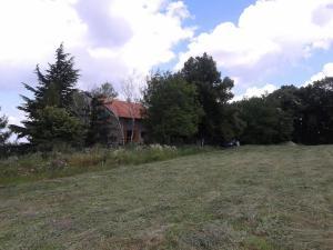 Guest House Vidmar, Гостевые дома  Сремски-Карловци - big - 78