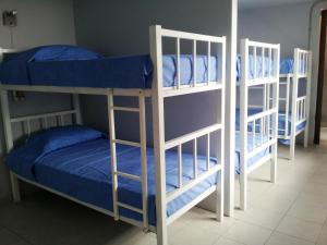 Bunk Bed in 12-Bed Dormitory Room