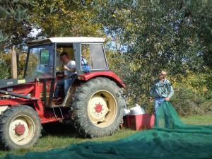 Casale Giuncheto, Farmy  Pilonico Paterno - big - 52