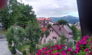 Private accommodation Lidija Rakočević, Penzióny  Kolašin - big - 20