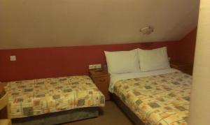 Private accommodation Lidija Rakočević, Penzióny  Kolašin - big - 4