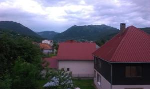 Private accommodation Lidija Rakočević, Penzióny  Kolašin - big - 28