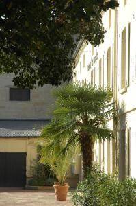 Hôtel de France, Szállodák  Libourne - big - 54