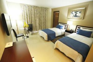 Del Sur Hotel-Museo, Hotels  Encarnación - big - 3