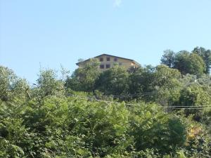 Uliveto Garden, Bed & Breakfast  Bagnara Calabra - big - 61