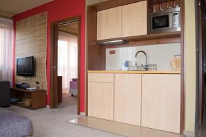 Apartmán Vysoké Tatry, Apartmány  Veľká Lomnica - big - 33