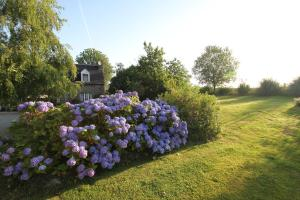 Les Freuberts B&B, Bed & Breakfasts  Landivy - big - 20