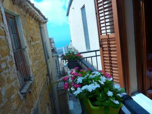 Corte dei Greci, Bed & Breakfasts  Agrigent - big - 13