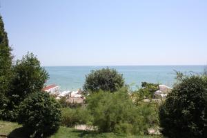 Neptune Hotel, Отели  Святые Константин и Елена - big - 20
