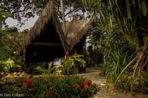 Pousada Coco Fresco, Гостевые дома  Пипа - big - 43