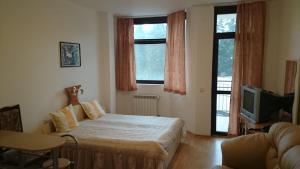 TES Flora Apartments, Apartments  Borovets - big - 59