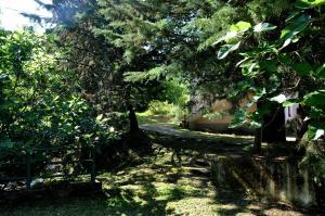 Il Ruscello di Ceraso